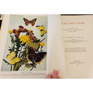 The Butterfly Book : 1901 RARE